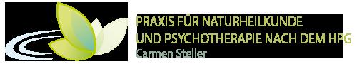 carmensteller.de